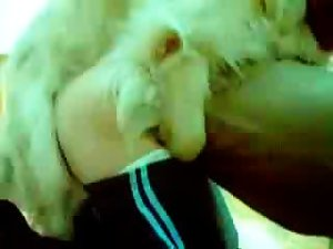 Dog pov fuck woman crazy show cam